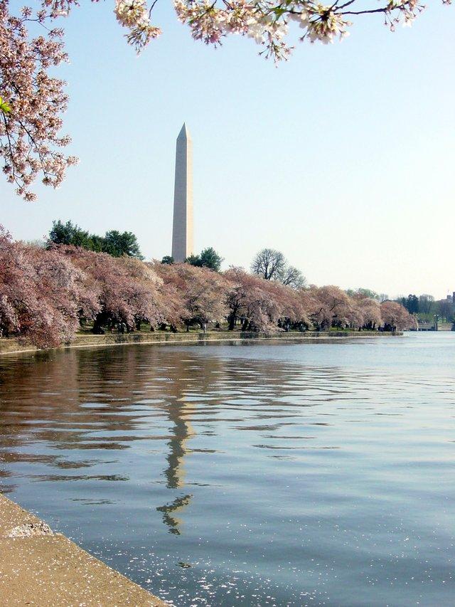 Washington-Memorial-DC-2004-creditsimon_williams.jpe