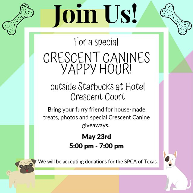 Save the Date Yappy Hour.jpg