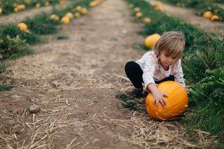 fall-activities-for-preschoolers-1.jpg