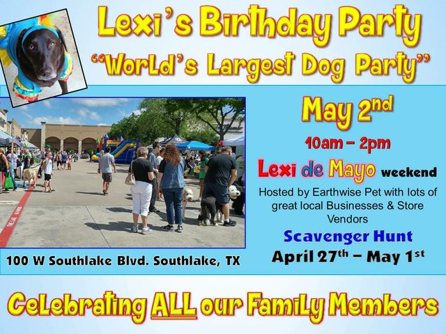 Lexi's Bday Party 2020 Banner.jpg