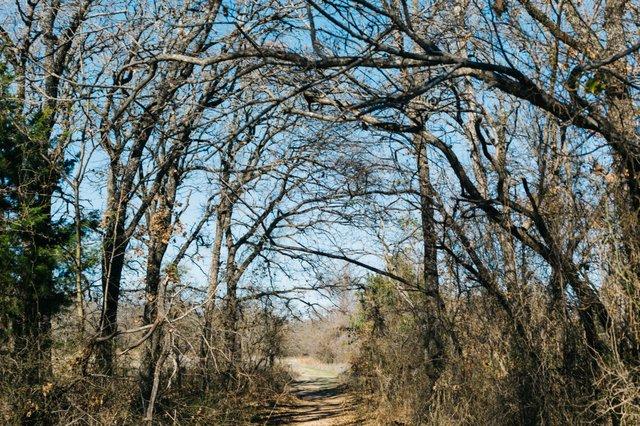 Nature Preserve-19 (1).jpg