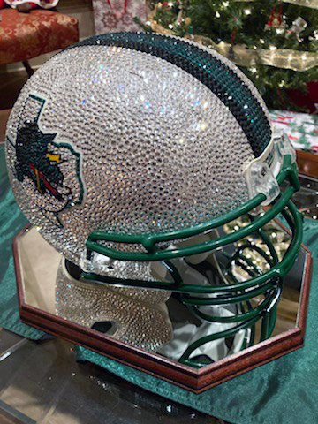 Swarovski Helmet Top.jpg