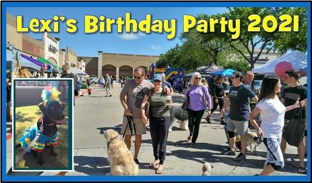 Lexi's Bday Party 2021 Banner.jpg