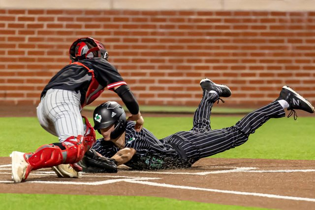 dragon baseball photo.jpeg
