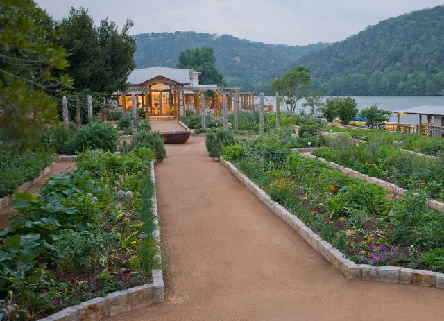 Copy of Organic Gardens.jpg