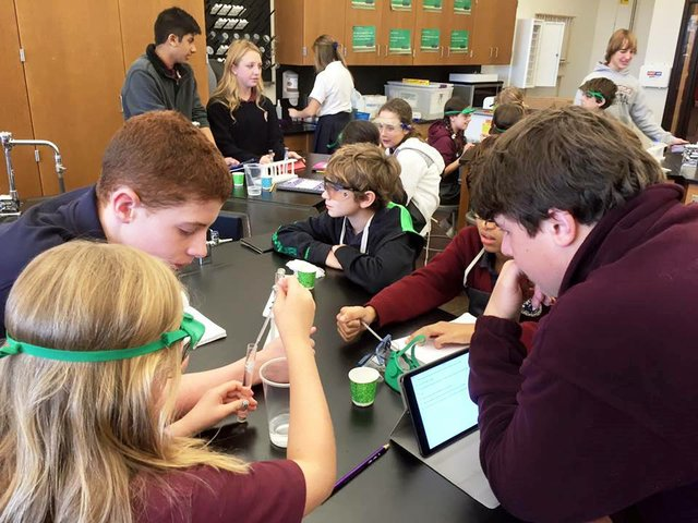 DNA_20extraction.jpe